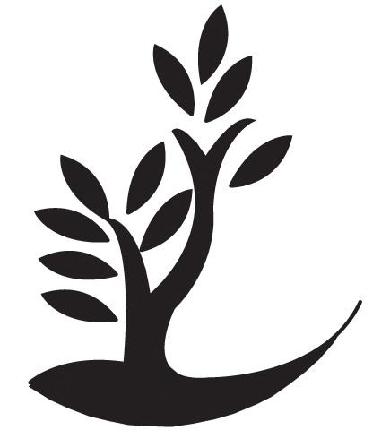 consorcio yaguare241o ltda